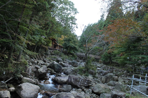 秋キャンプ 066