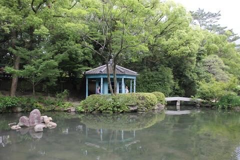 USJ、大阪自然史博物館 575