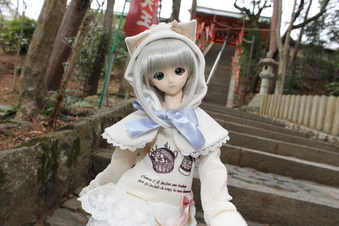京都ドルパ13 036