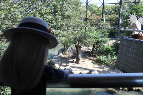 天王寺動物園 093-2