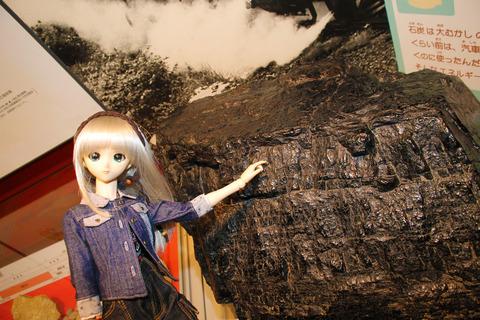 USJ、大阪自然史博物館 332-2