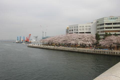 横浜中華街 120