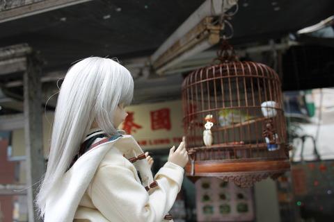香港・マカオ 041