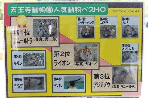 天王寺動物園 020