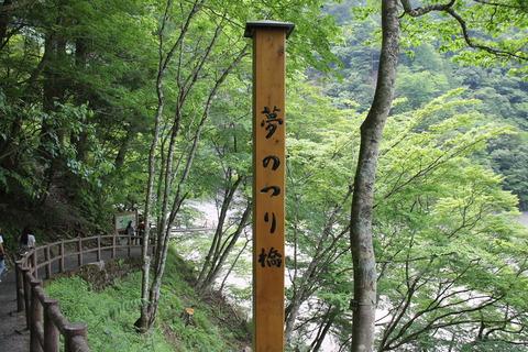 大井川鉄道 203