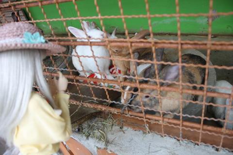 タイ三日目 032