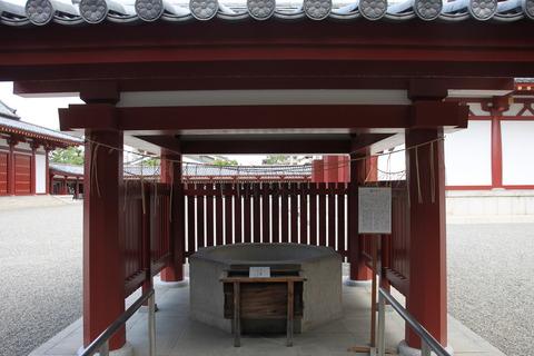 USJ、大阪自然史博物館 505