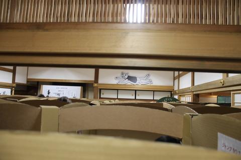 USJ、大阪自然史博物館 543