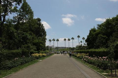 USJ、大阪自然史博物館 456