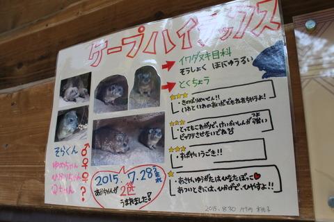 天王寺動物園 173