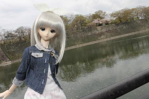 大阪城公園花見 058