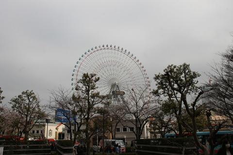 横浜中華街 118