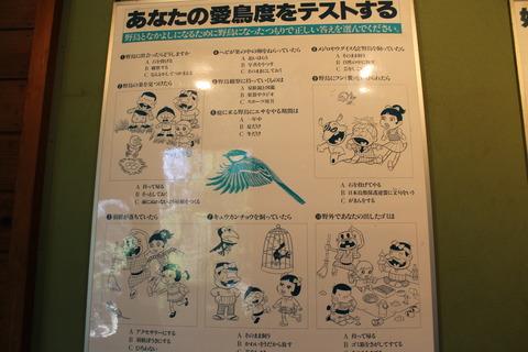 天王寺動物園 089