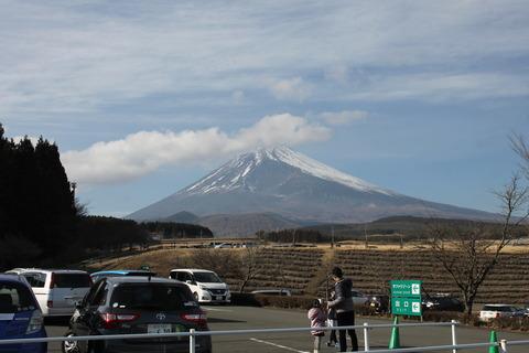 富士サファリパーク 171