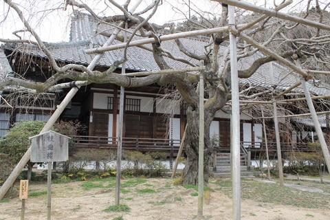 京都ドルパ13 016
