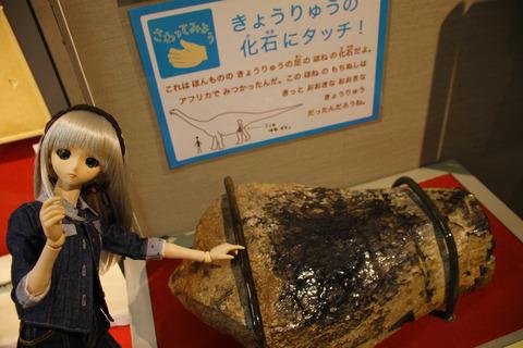 USJ、大阪自然史博物館 370-2