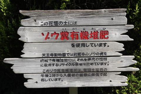 天王寺動物園 080