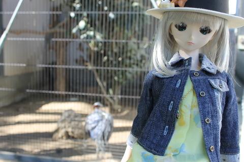 天王寺動物園 058