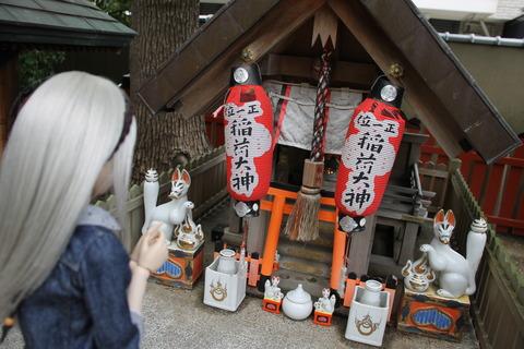 USJ、大阪自然史博物館 573