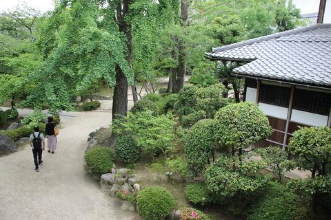 USJ、大阪自然史博物館 561