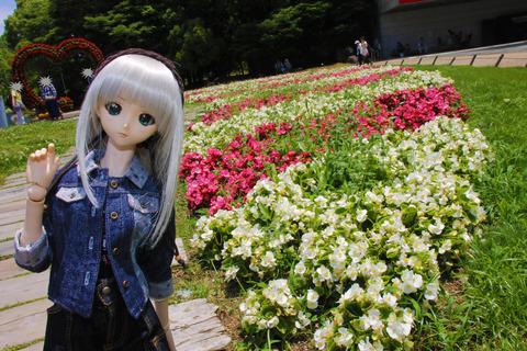 USJ、大阪自然史博物館 444-2