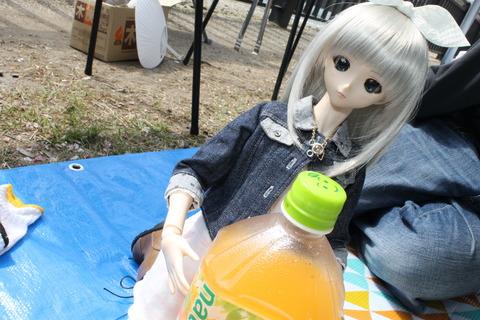 大阪城公園花見 106