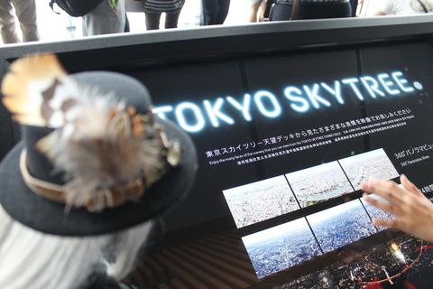 東京ゲームショー、スカイツリー 310