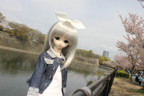 大阪城公園花見 010