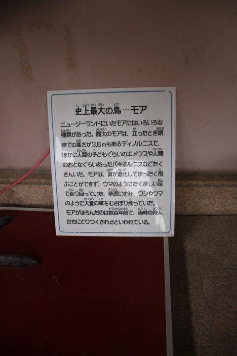 カップヌードルミュージアム 069