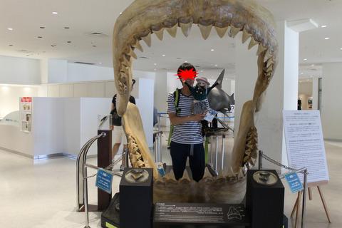 沖縄旅行 458-2