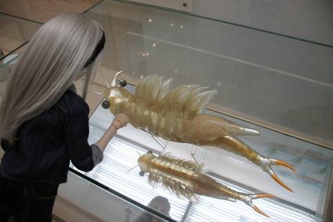 USJ、大阪自然史博物館 416