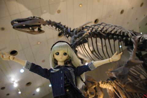 USJ、大阪自然史博物館 359-2