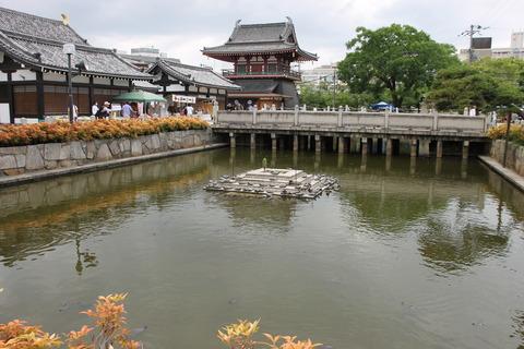 USJ、大阪自然史博物館 512