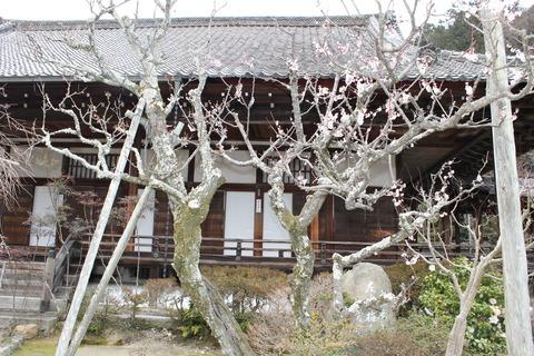 京都ドルパ13 017