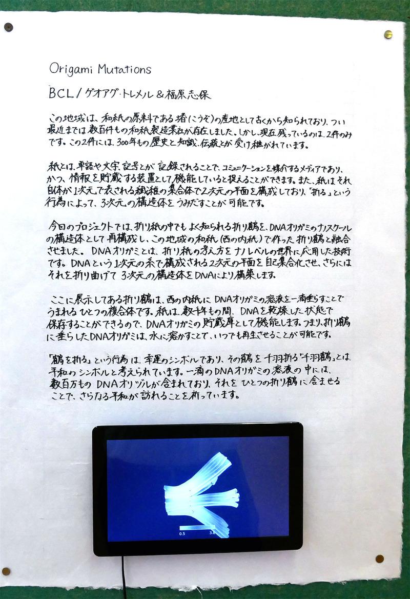 折り紙ミューテーションの説明