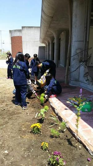 旧大川小学校の清掃作業