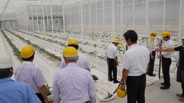 最新鋭の植物工場