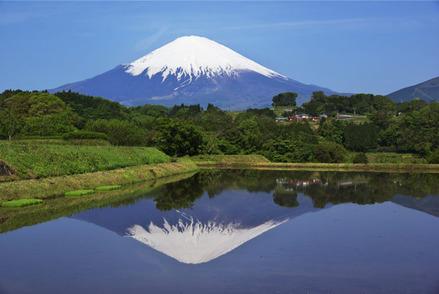 富士山写真〜四季の富士〜より