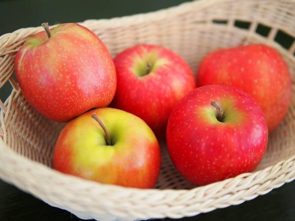 茨城県大子町のリンゴ