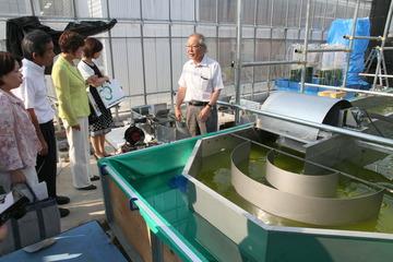 筑波大学藻類バイオマス・エネルギーシステム研究拠点