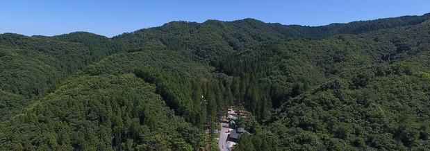 大和の森・高萩スカウトフィールド