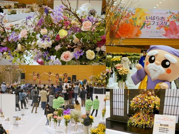 いばらき花フェスタ2014