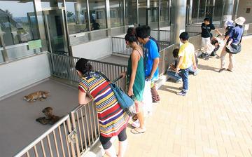 長野県動物愛護センター