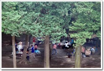 木立の中でバーベキュー