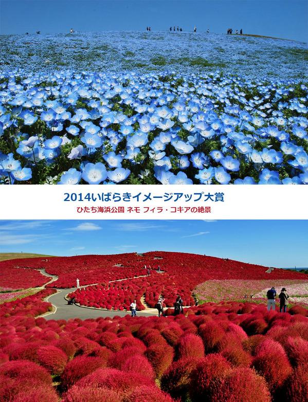 2014いばらきイメージアップ大賞