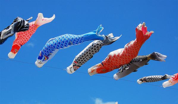 青空に泳ぐ鯉のぼり