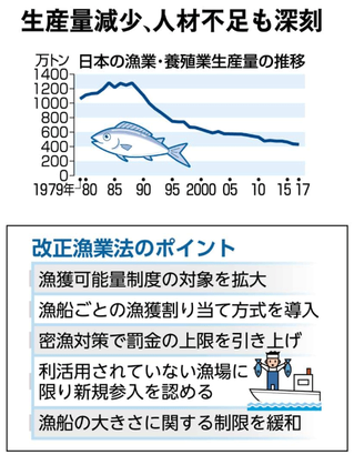 漁業法改正