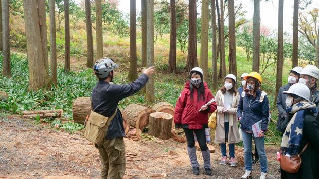 石岡市ふれあいの森ioka02 (1 - 1)