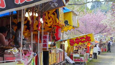 1-130423静八重桜公園a041
