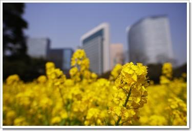 Photo by (c)Tomo.Yun (http://www.yunphoto.net)